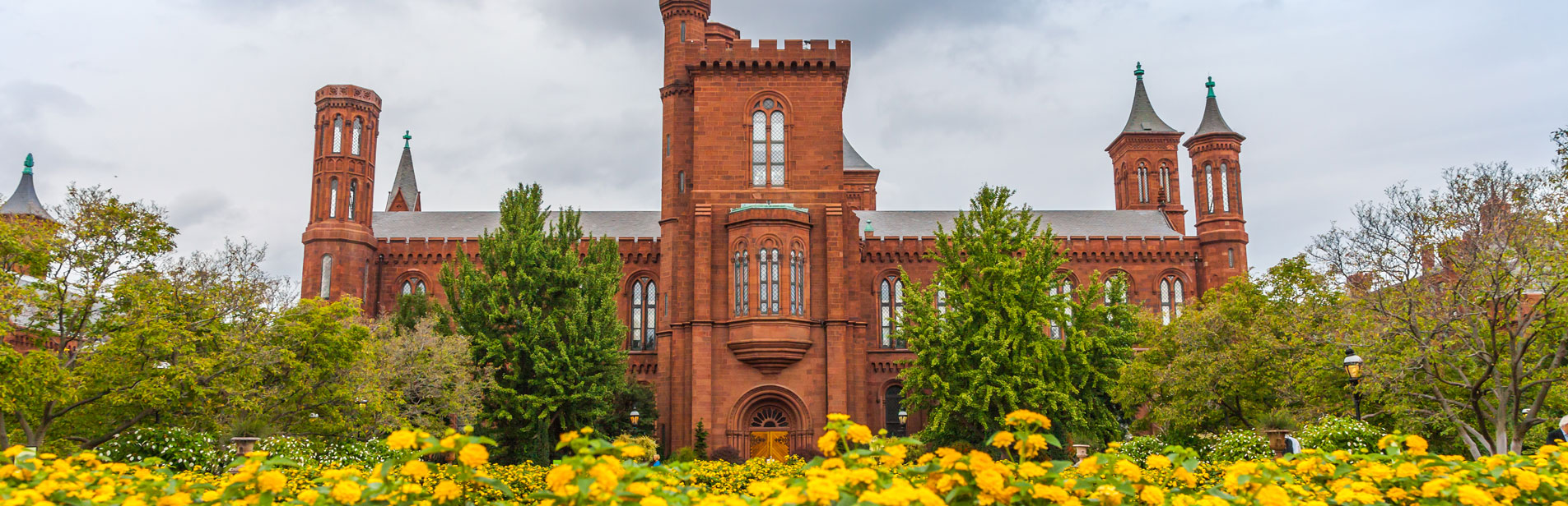 smithsonian museum in washington dc